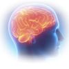 Для мозга и памяти
