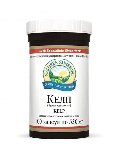 Бурая водоросль (Kelp)